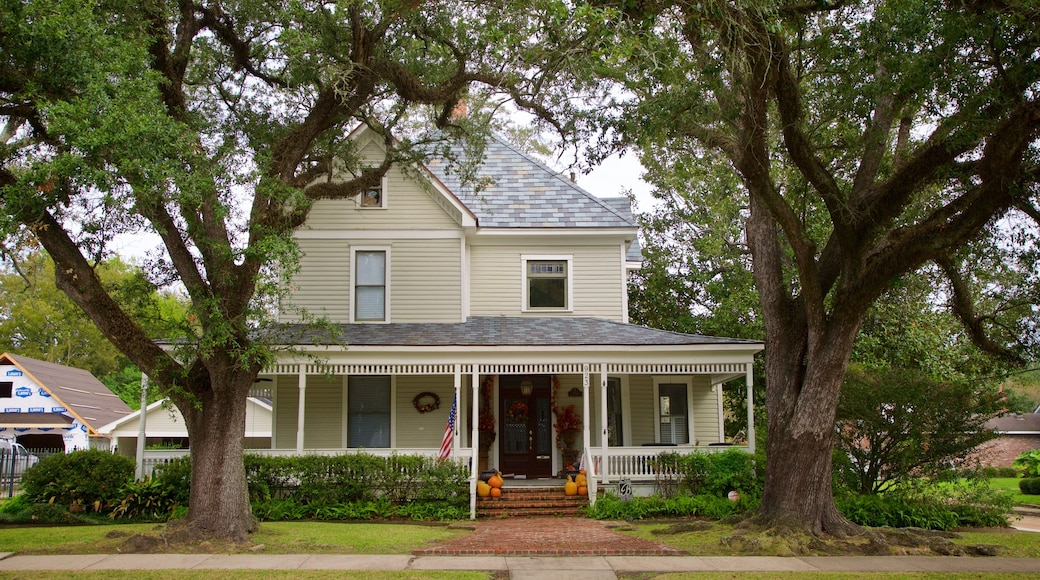 Lake Charles Historic District featuring a house
