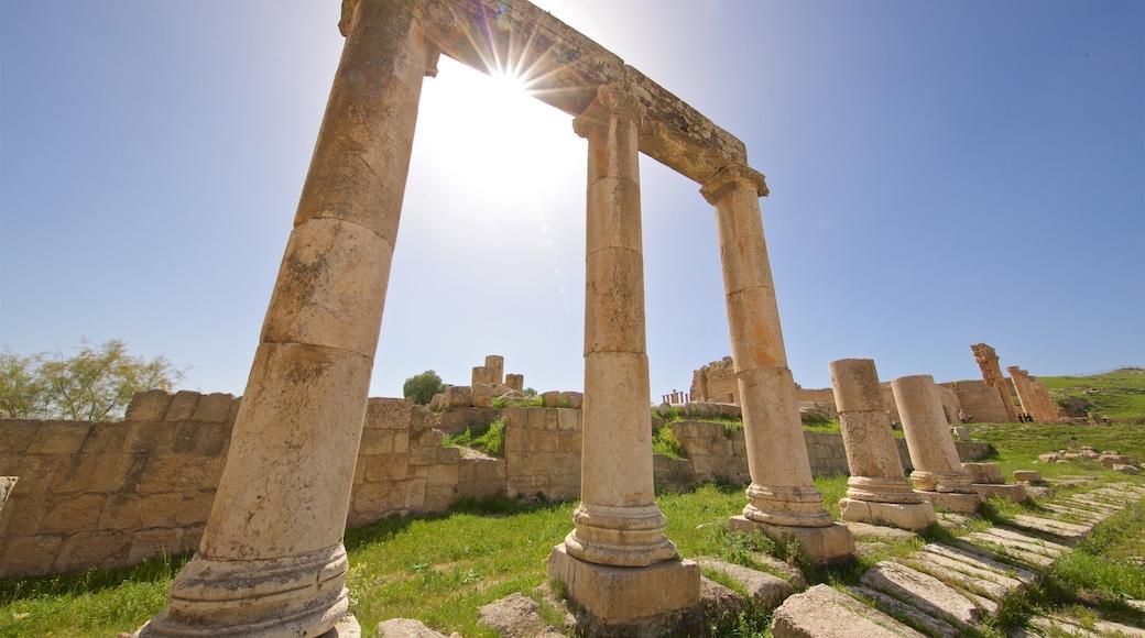 Jerashs arkeologiska museum som inkluderar en solnedgång, historisk arkitektur och ruiner