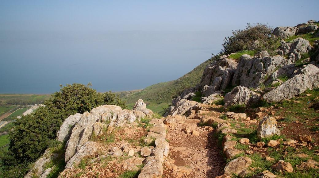 Mont Arbel