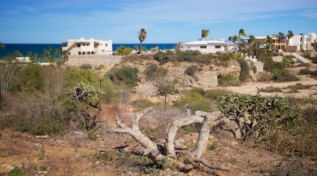 Buenavista featuring general coastal views