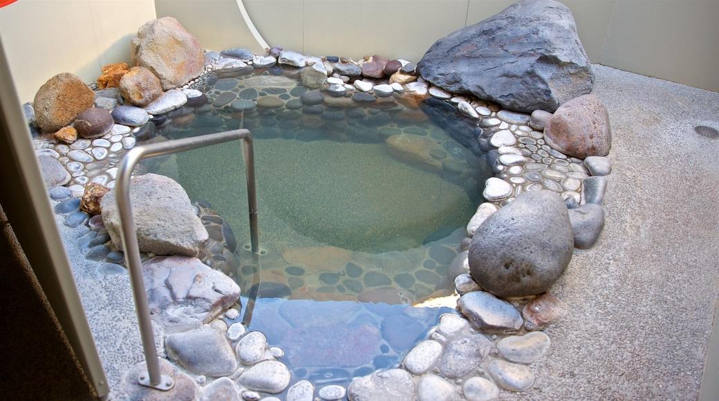Polynesian Spa showing a pool