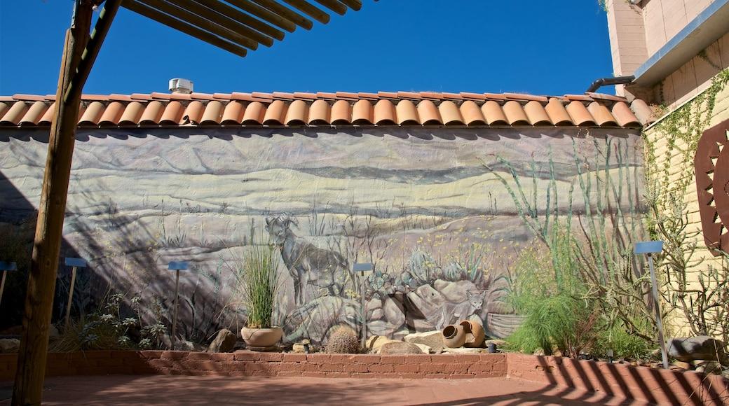 Agua Caliente Cultural Museum showing outdoor art
