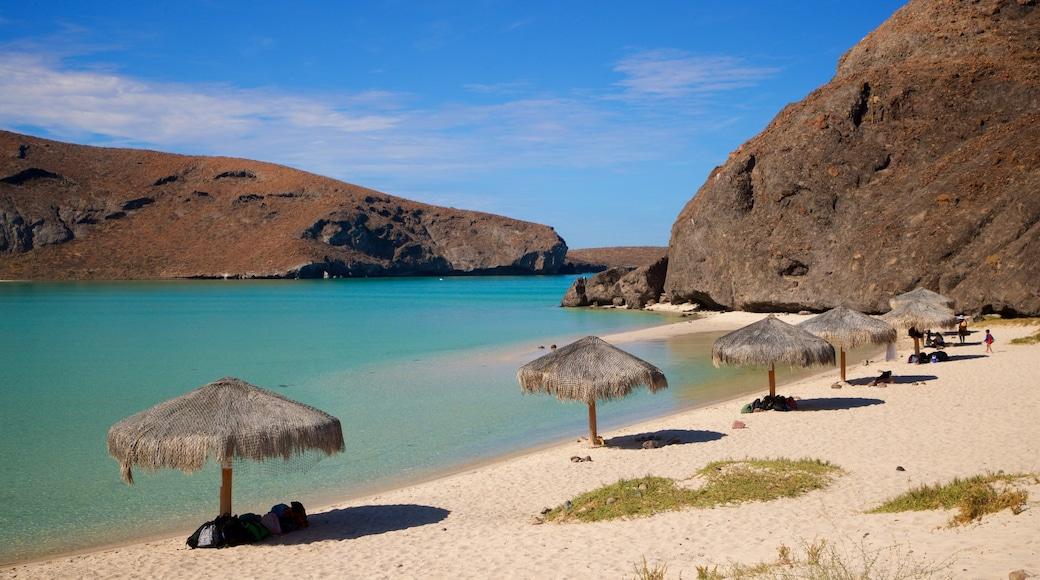 Balandra Beach featuring general coastal views, a beach and tropical scenes