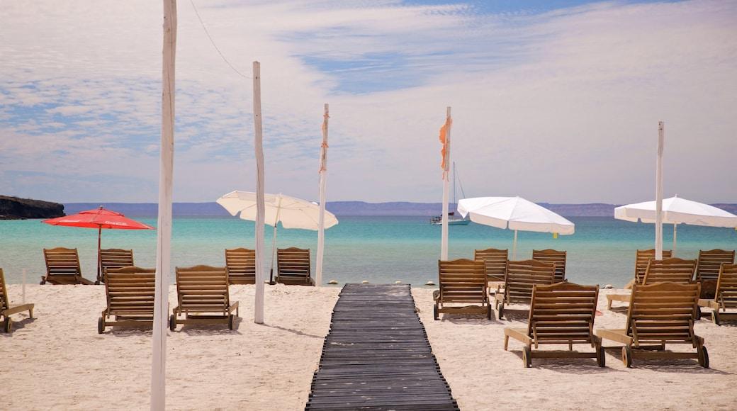 Pichilingue Beach featuring a sandy beach and general coastal views