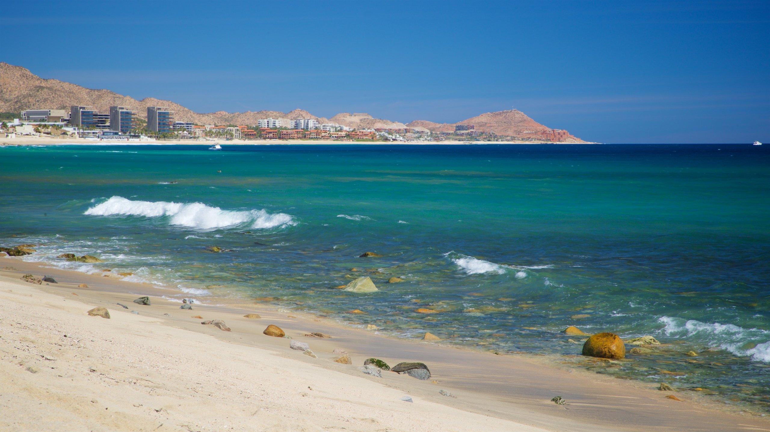Desert Park Natural Reserve, Cabo San Lucas, Baja California Sur, Mexico