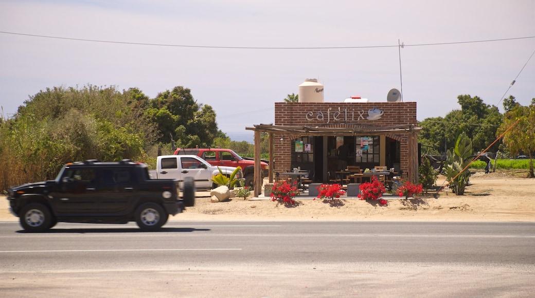 Los Cerritos Beach which includes a small town or village
