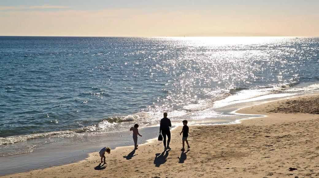 Brighton Beach featuring a sunset, general coastal views and a beach