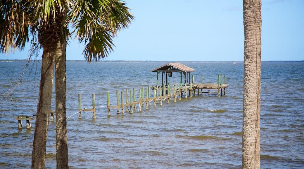 Titusville showing general coastal views