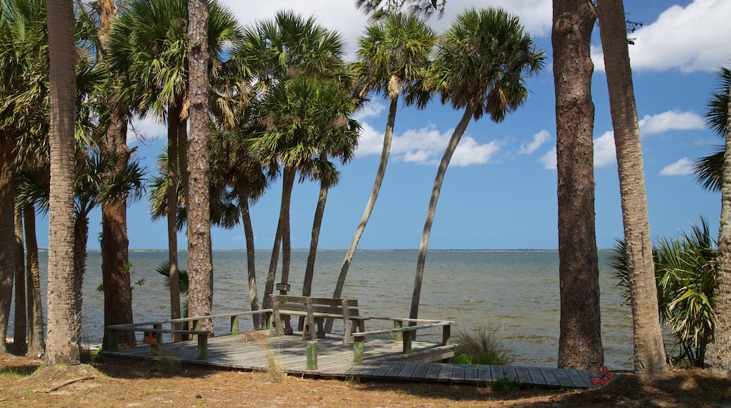 Titusville which includes general coastal views