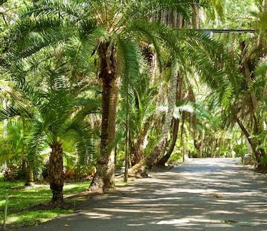 Joy and Gordon Patterson Botanical Garden