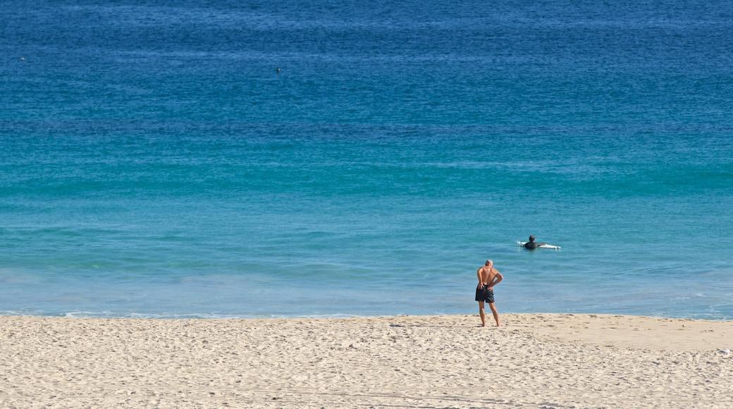 Sorrento Beach showing general coastal views and a beach as well as an individual male