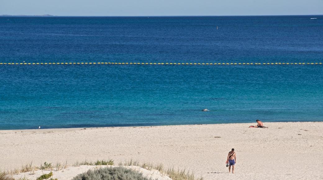 Sorrento Beach showing a beach and general coastal views