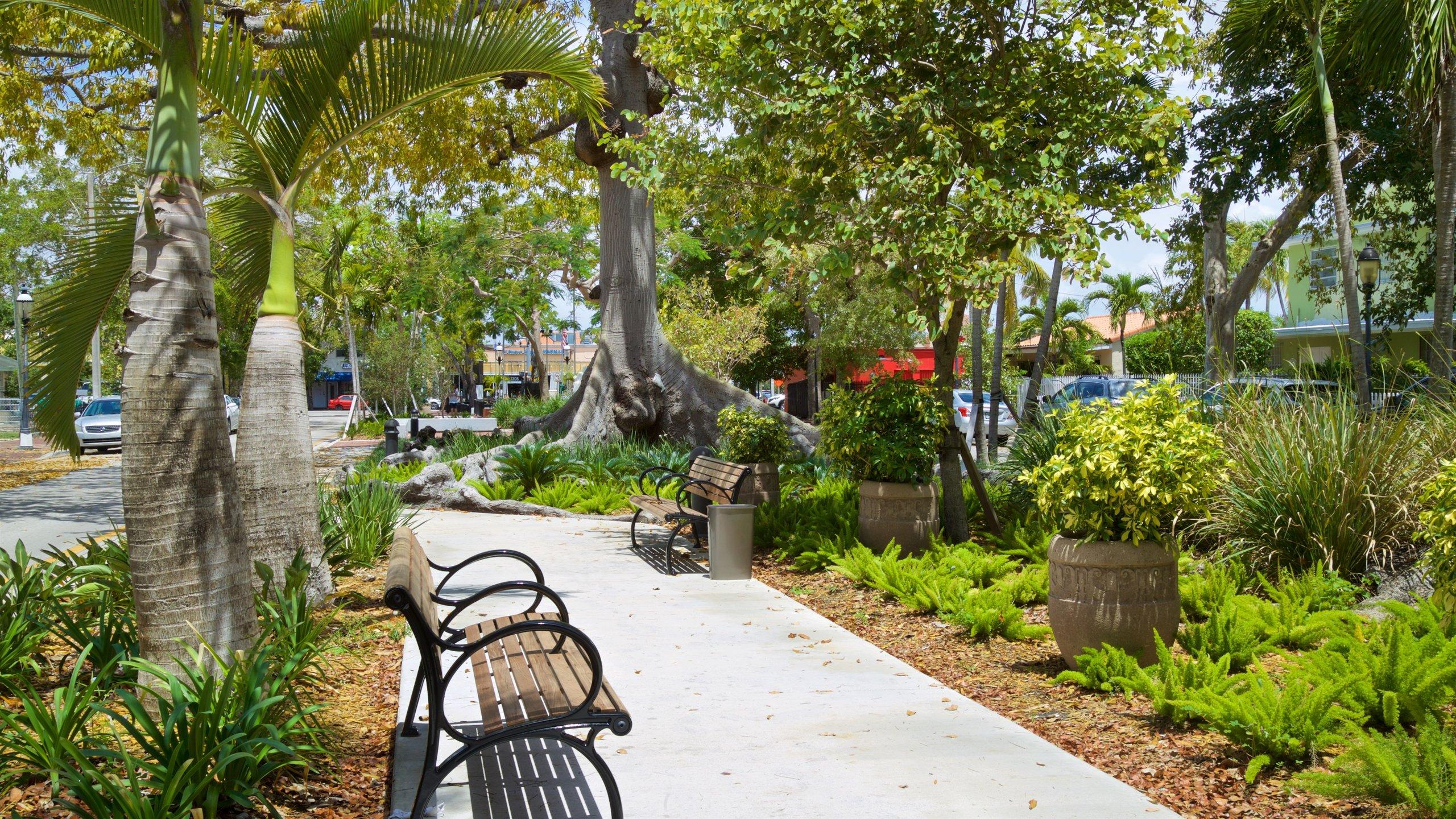 Coral Way, Miami, Florida, United States of America