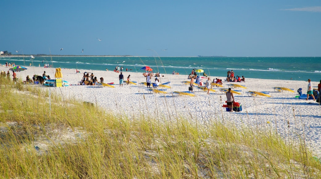 St. Pete Beach showing general coastal views and a beach as well as a small group of people