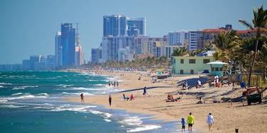 Dania Beach, Florida, United States of America