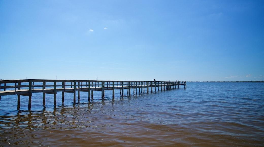 Punta Gorda featuring general coastal views