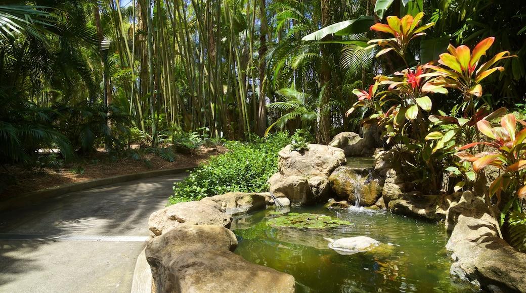 Sunken Gardens which includes a pond and a garden