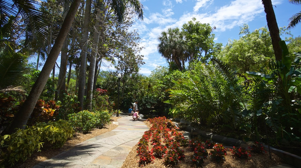 Sunken Gardens which includes wildflowers and a park
