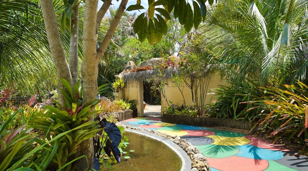 Sunken Gardens featuring a park