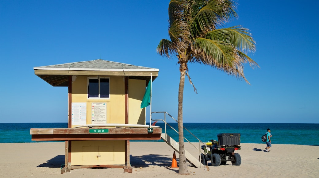 Hollywood Beach showing tropical scenes, a sandy beach and general coastal views