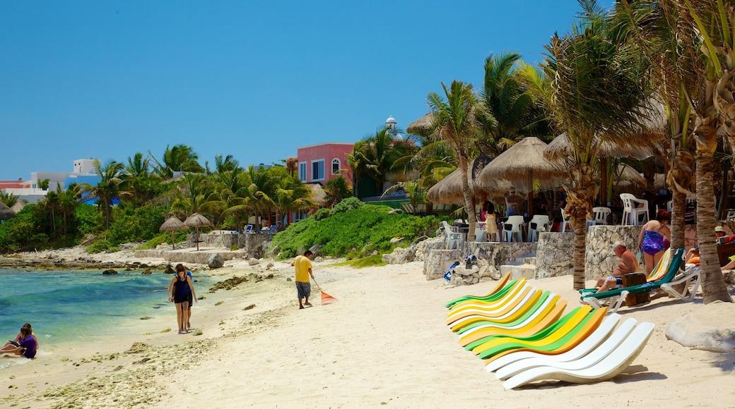 Half Moon Bay welches beinhaltet Strand, tropische Szenerien und Küstenort