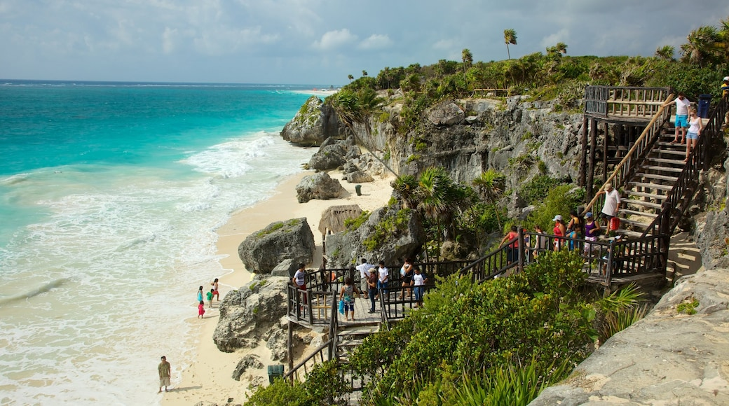 Tulum Mayan Ruins showing tropical scenes and rugged coastline