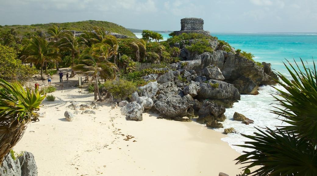 Ruinas mayas de Tulum mostrando vistas generales de la costa, escenas tropicales y una playa