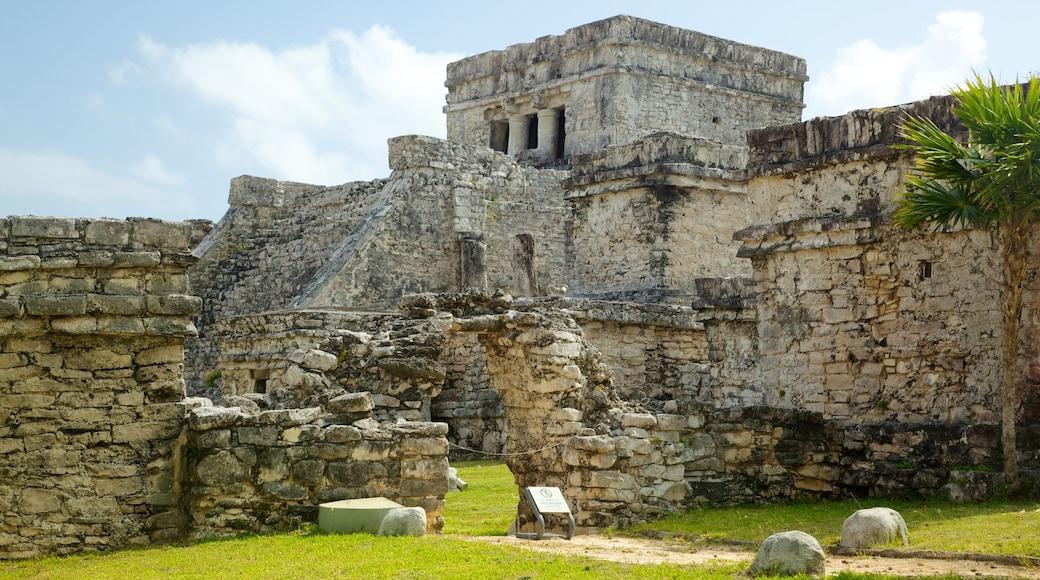 Ruinas mayas de Tulum ofreciendo ruinas de edificios