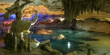 Ecopark Kantun Chi featuring caves