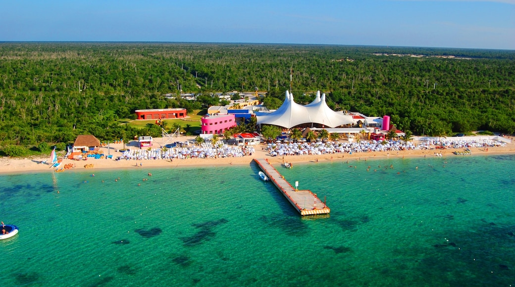 Cozumel which includes tropical scenes and a sandy beach