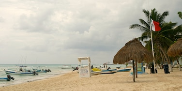Playa del Carmen featuring boating, a sandy beach and tropical scenes
