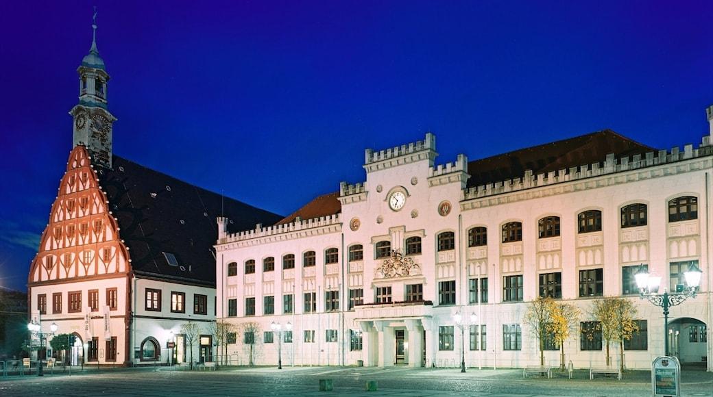 Zwickau som omfatter en kirke eller en katedral, natteliv og en by