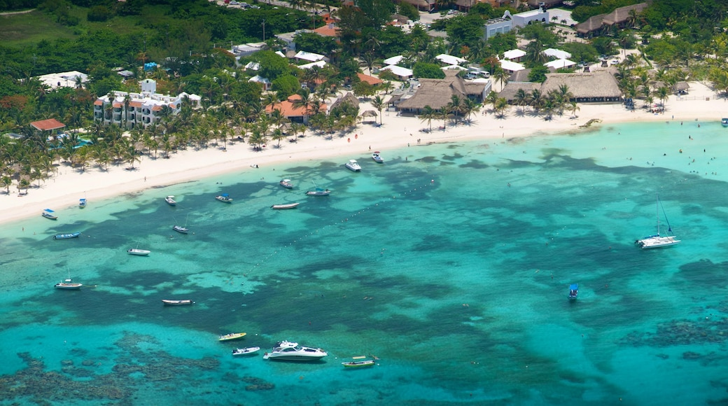 Riviera Maya showing tropical scenes, boating and a sandy beach