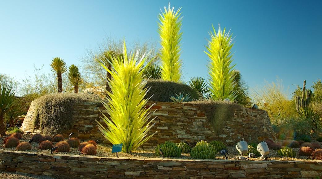 Desert Botanical Garden featuring a garden