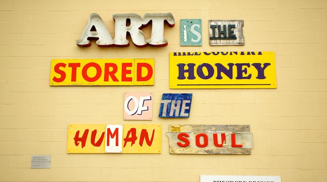 San Antonio Museum of Art welches beinhaltet Beschilderung