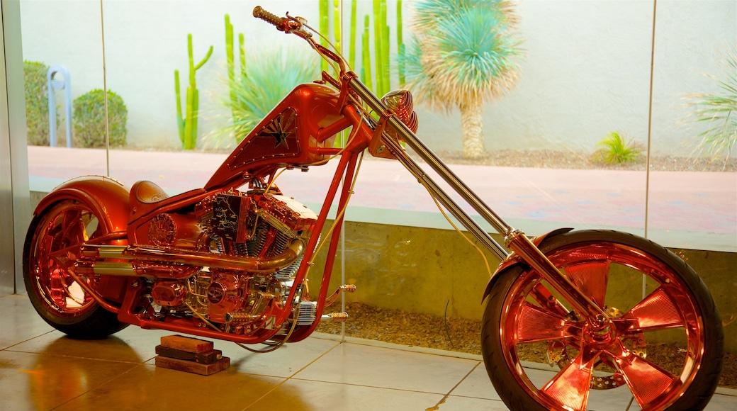 Scottsdale Museum of Contemporary Art caratteristiche di arte e vista interna