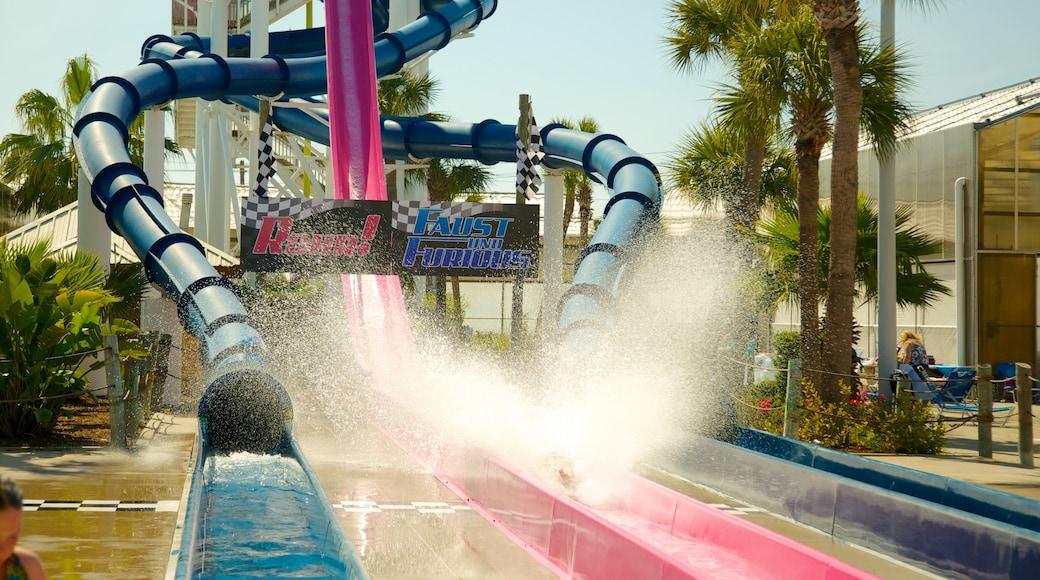Galveston Schlitterbahn Waterpark featuring rides and a water park