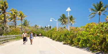 Hollywood Beach, Hollywood, Broward County, Florida, USA