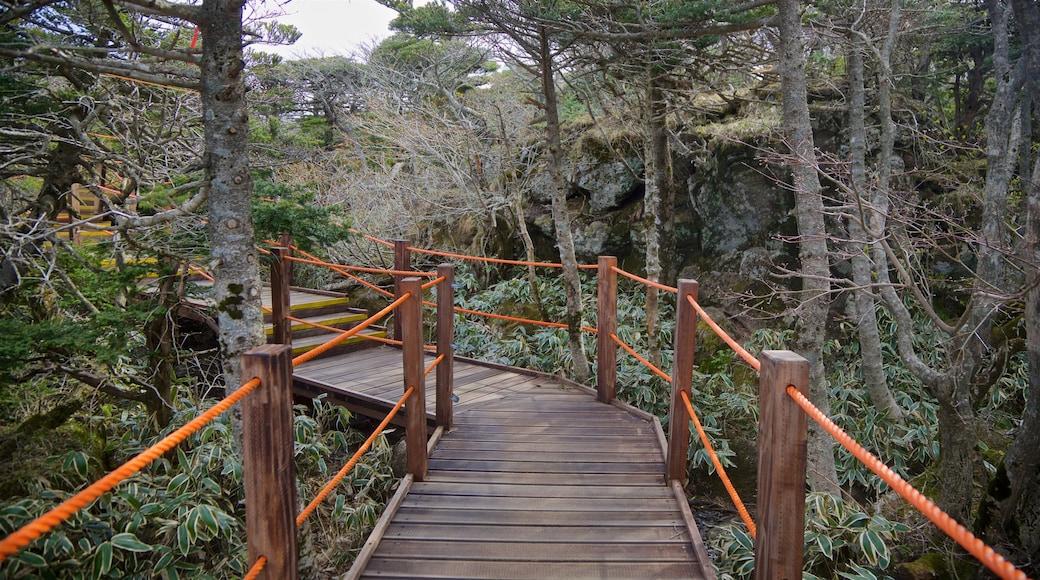 한라산국립공원