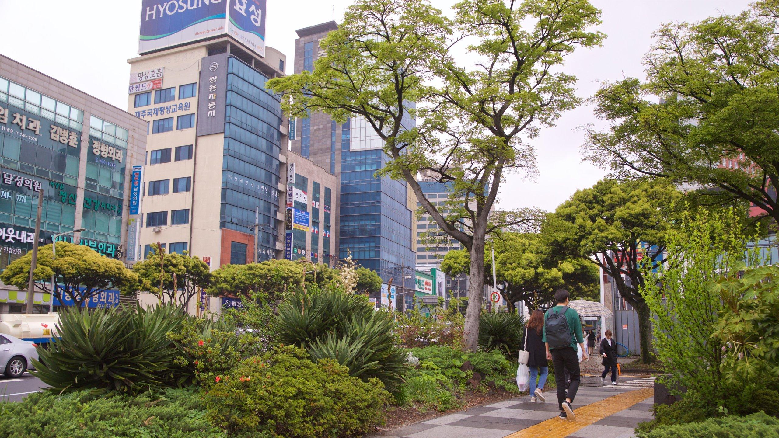 Jeju, Jeju, Corea del Sud