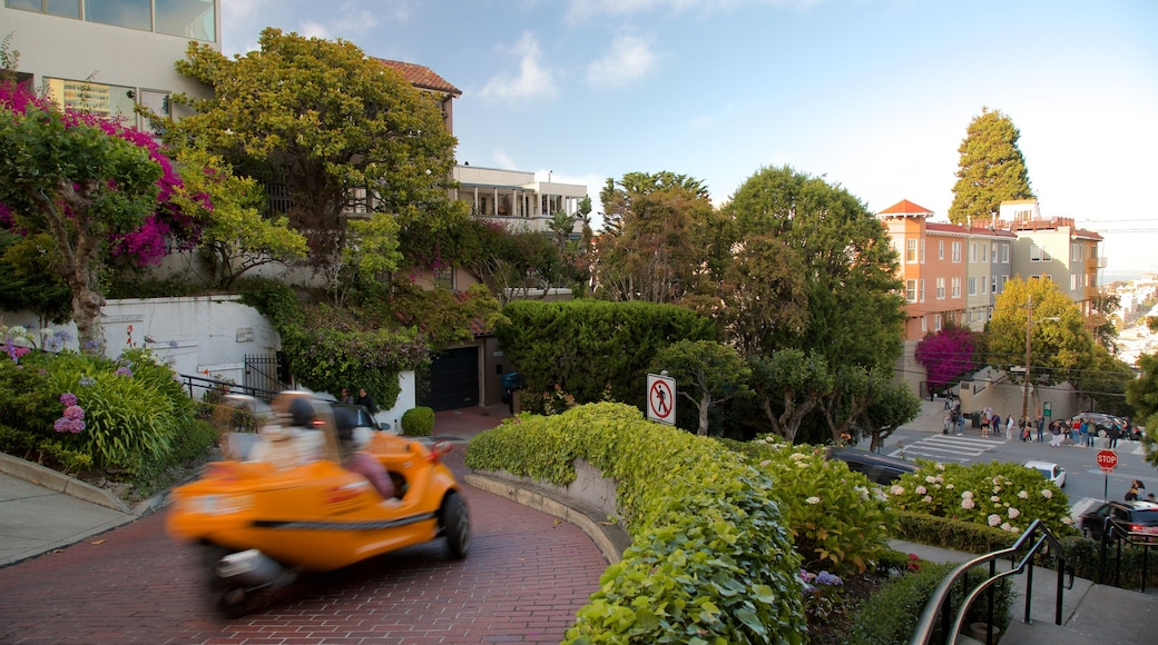 Lombard Street featuring a garden, flowers and a sunset
