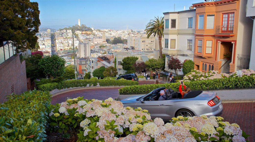 Lombard Street featuring flowers and a garden