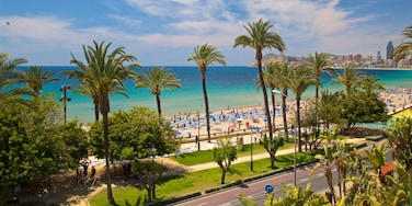 Stadtzentrum von Benidorm, Benidorm, Valencianische Gemeinschaft, Spanien