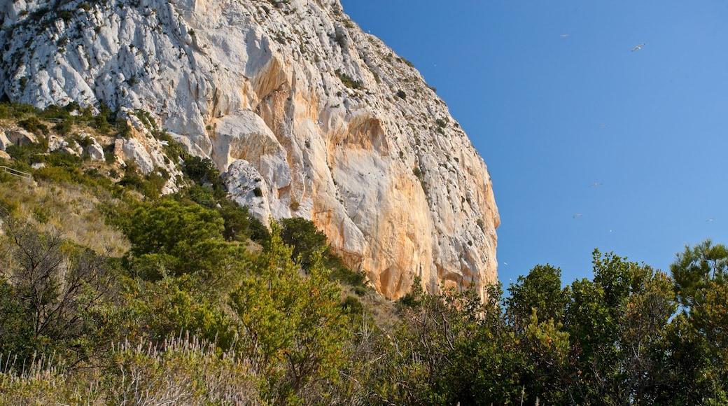 Parque Natural de Penyal d'Ifach