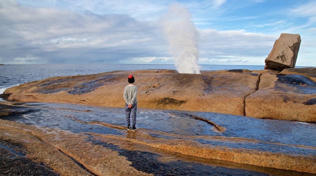 Bicheno Blowhole