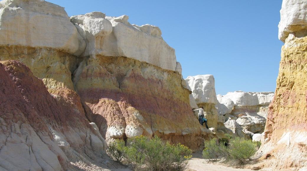 Colorado Springs featuring a gorge or canyon