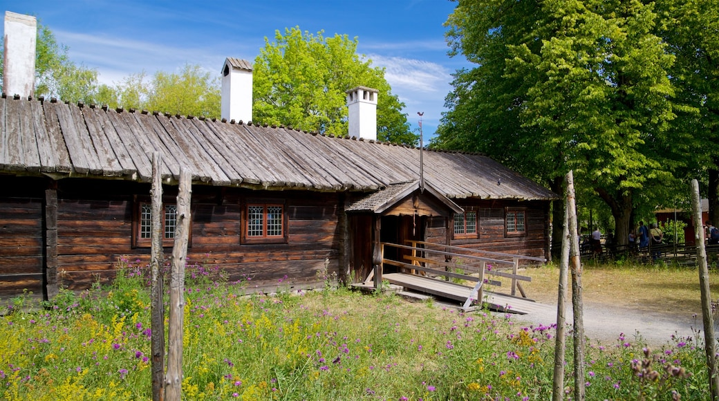 Skansen which includes wildflowers and farmland