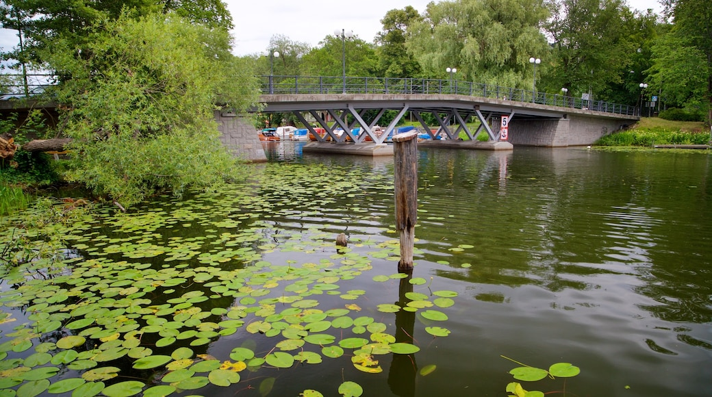 Langholmen featuring a bridge and a pond