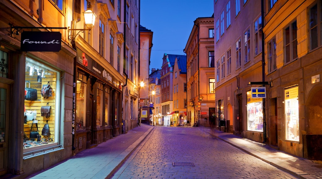 Gamla Stan which includes a city and night scenes