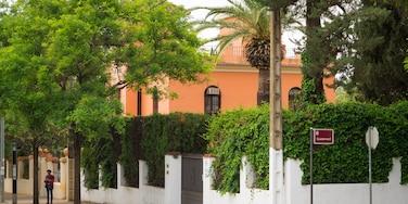 Zona de la Avenida del Brillante, Córdoba, Andalucía, España
